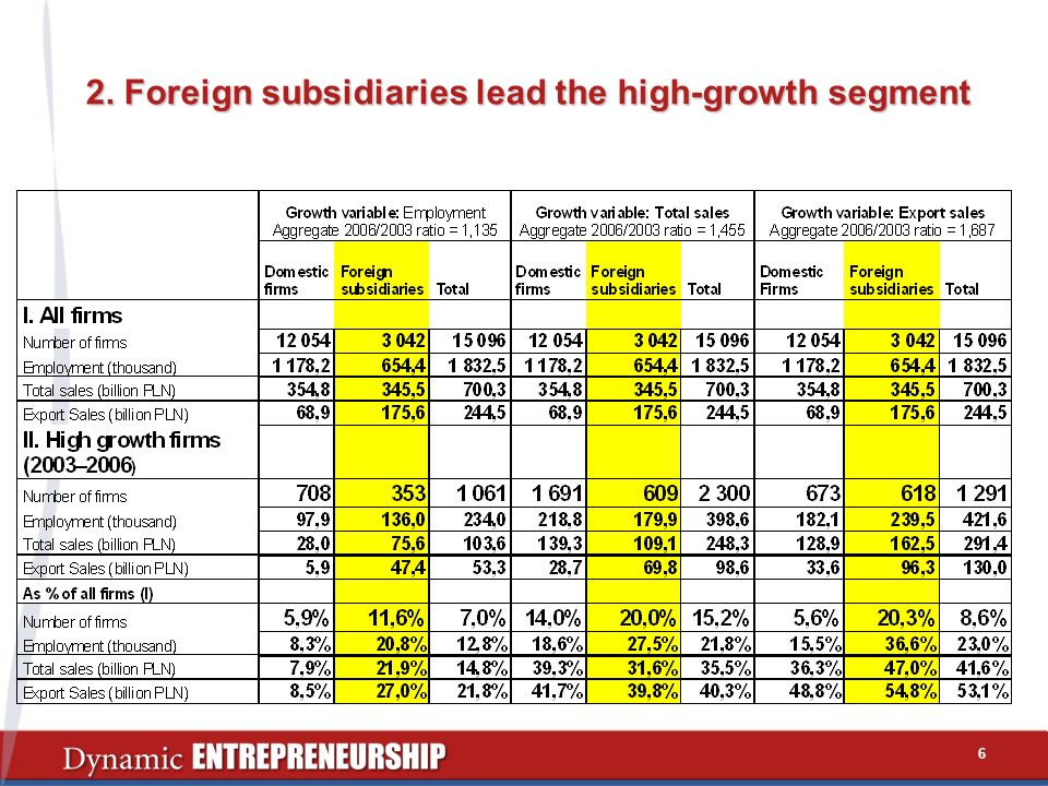 2. Foreign subsidiaries lead the high-growth segment 6