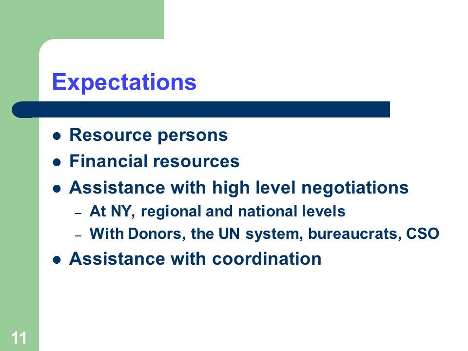 11 Expectations Resource persons Financial resources Assistance with high level negotiations – At NY, regional and national levels – With Donors, the UN system, bureaucrats, CSO Assistance with coordination
