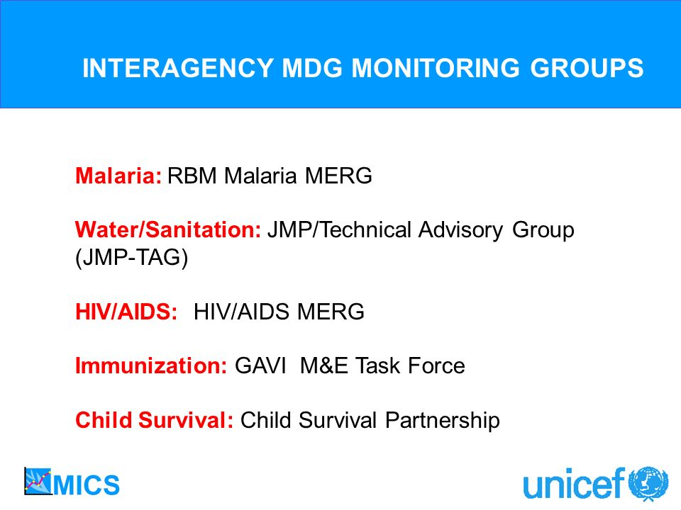 Malaria: RBM Malaria MERG Water/Sanitation: JMP/Technical Advisory Group (JMP-TAG) HIV/AIDS: HIV/AIDS MERG Immunization: GAVI M&E Task Force Child Survival: Child Survival Partnership INTERAGENCY MDG MONITORING GROUPS
