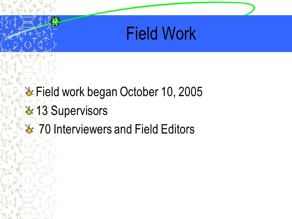 Field Work Field work began October 10, 2005 13 Supervisors 70 Interviewers and Field Editors