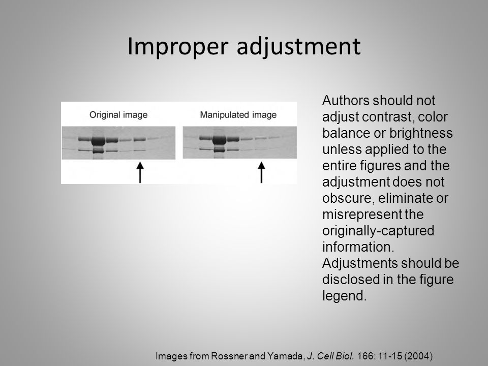 Improper adjustment Authors should not adjust contrast, color balance or brightness unless applied to the entire figures and the adjustment does not obscure, eliminate or misrepresent the originally-captured information.