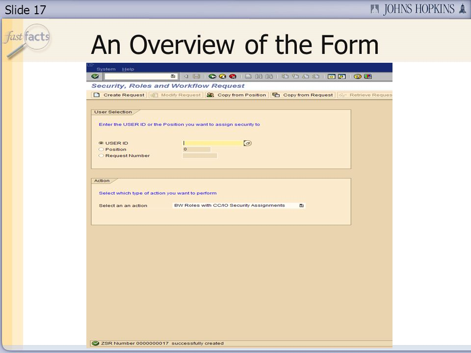 Slide 17 An Overview of the Form