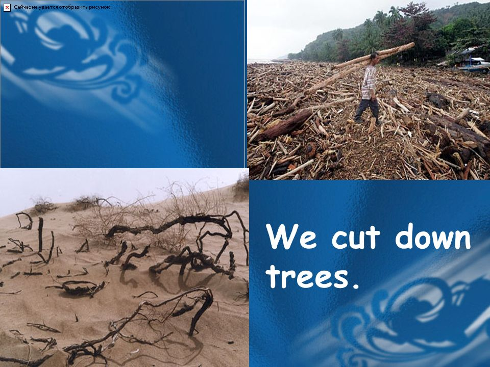 We cut down trees.