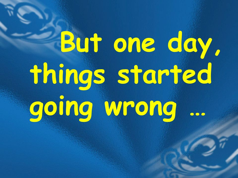 But one day, things started going wrong …