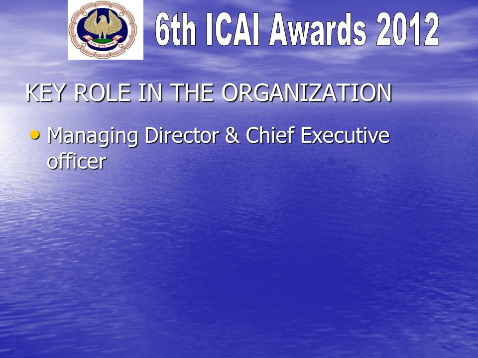 KEY ROLE IN THE ORGANIZATION Managing Director & Chief Executive officer Managing Director & Chief Executive officer