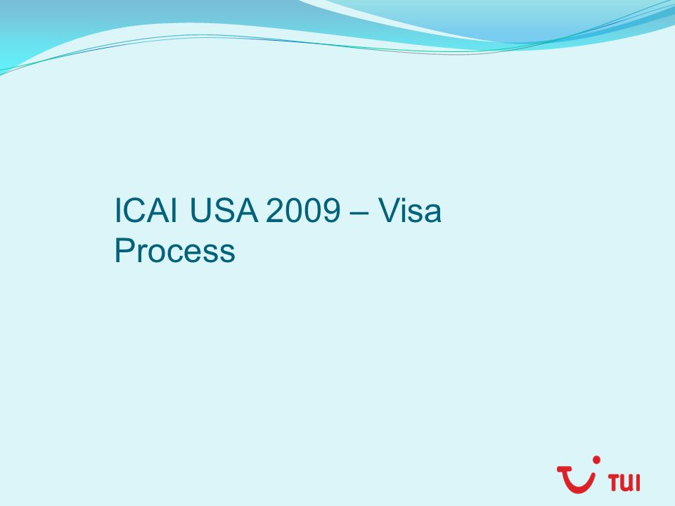 ICAI USA 2009 – Visa Process