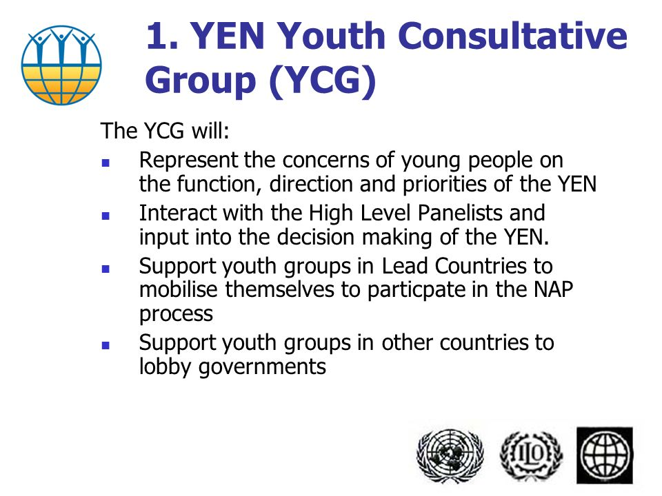 The YCG will: Represent the concerns of young people on the function, direction and priorities of the YEN Interact with the High Level Panelists and input into the decision making of the YEN.