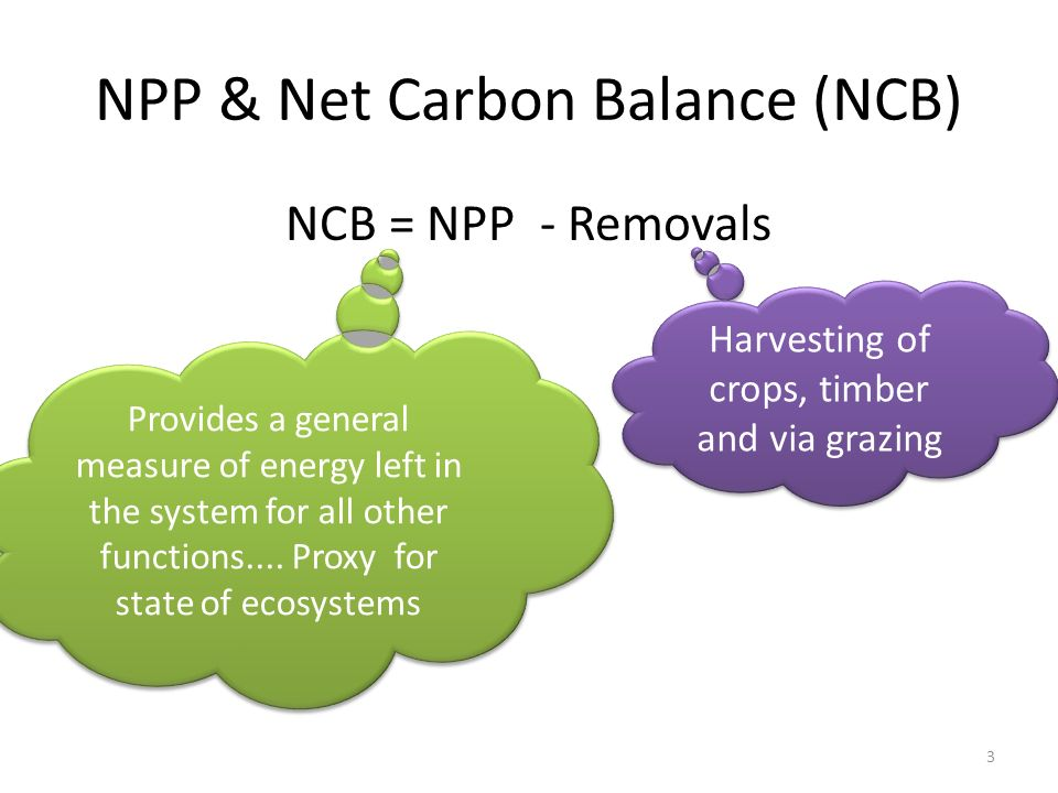 NPP & Net Carbon Balance (NCB) NCB = NPP - Removals Provides a general measure of energy left in the system for all other functions....
