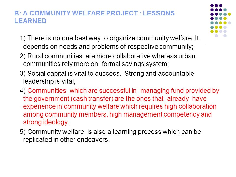 B: A COMMUNITY WELFARE PROJECT : LESSONS LEARNED 1) There is no one best way to organize community welfare.