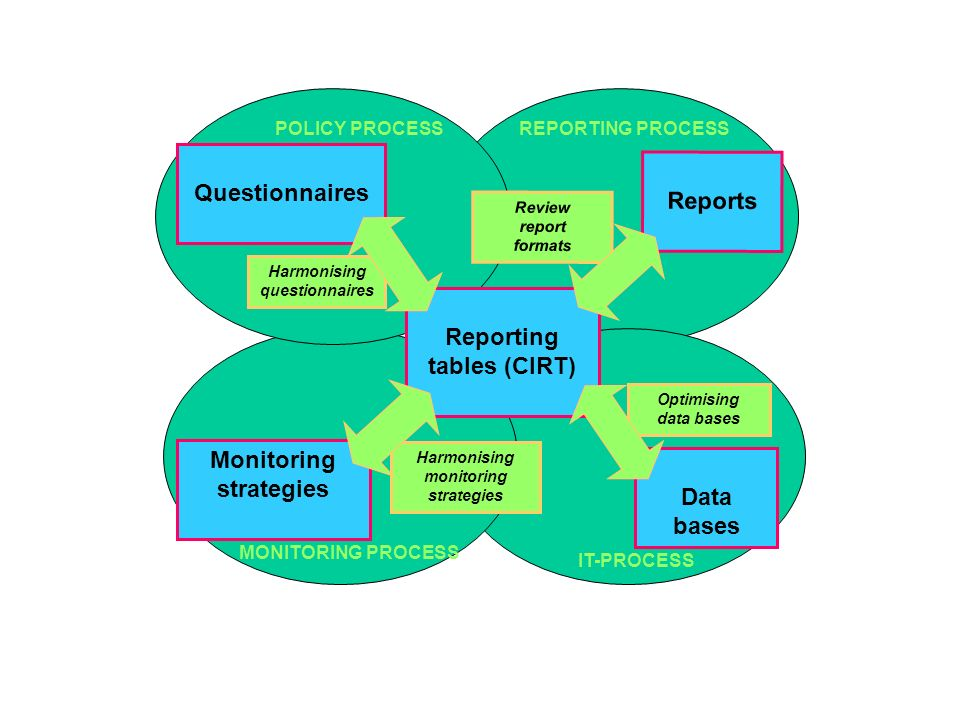 Optimising data bases Harmonising questionnaires Review report formats Harmonising monitoring strategies POLICY PROCESS MONITORING PROCESS REPORTING PROCESS Reporting tables (CIRT) Data bases Questionnaires Reports Monitoring strategies IT-PROCESS