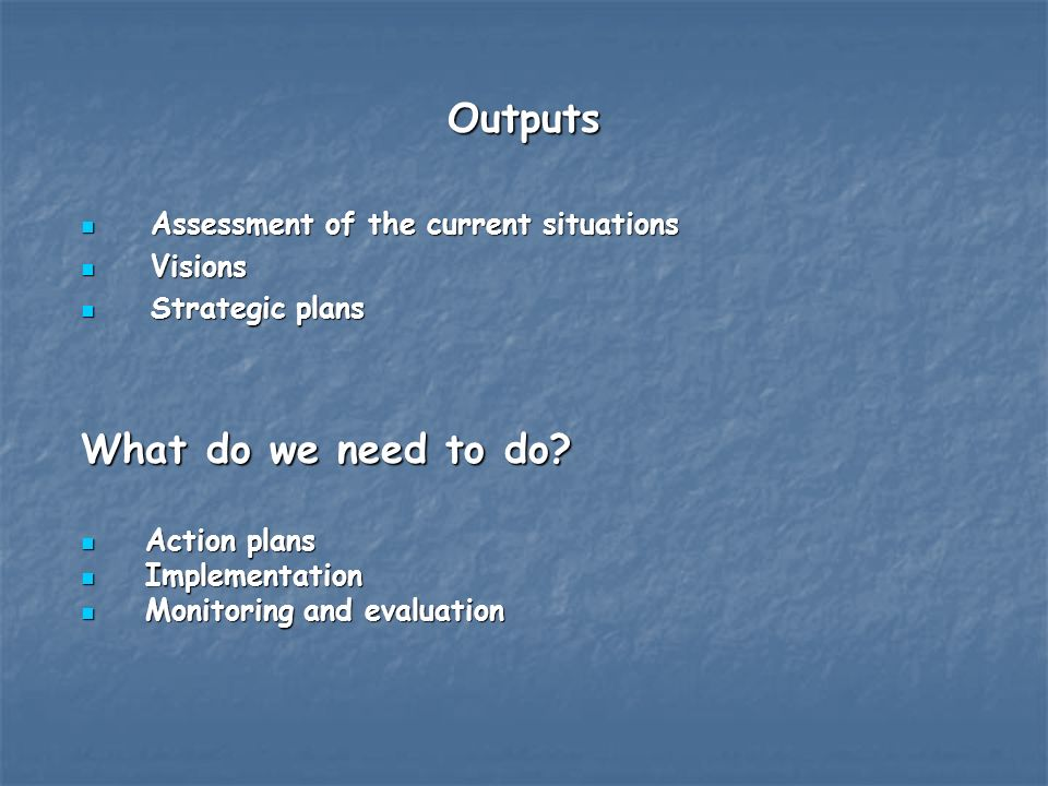 Outputs Assessment of the current situations Assessment of the current situations Visions Visions Strategic plans Strategic plans What do we need to do.