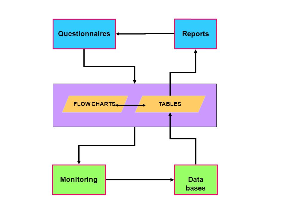 Data bases Questionnaires Reports Monitoring FLOW CHARTSTABLES