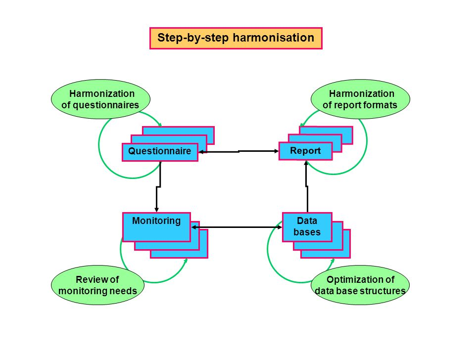 Questionnaire Report Data bases Step-by-step harmonisation Harmonization of questionnaires Optimization of data base structures Harmonization of report formats Monitoring Review of monitoring needs