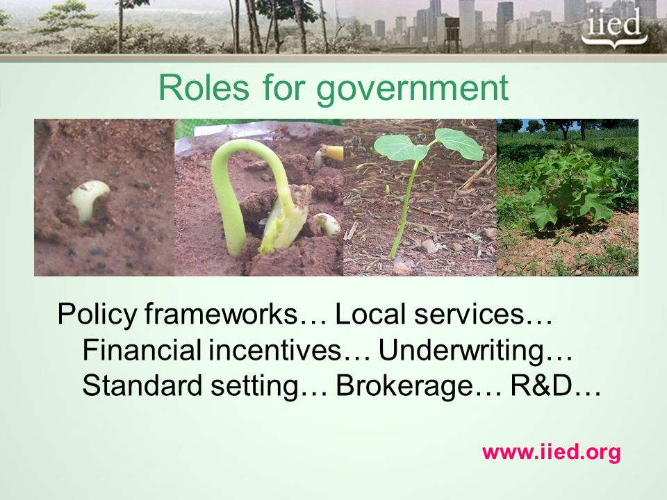 Roles for government Policy frameworks… Local services… Financial incentives… Underwriting… Standard setting… Brokerage… R&D… www.iied.org