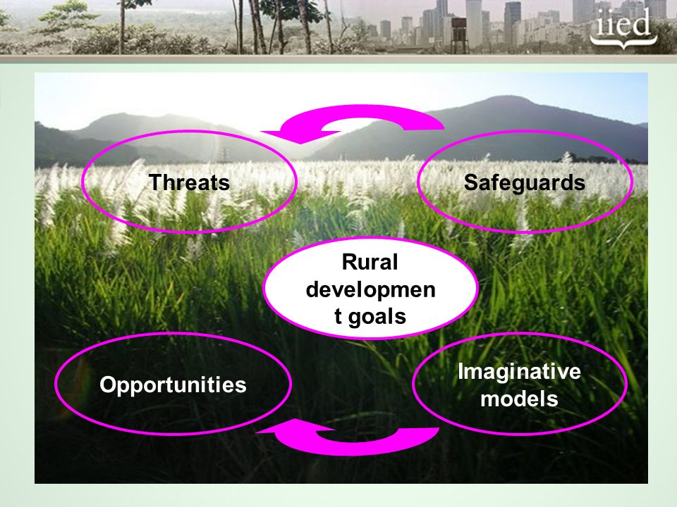Rural developmen t goals Imaginative models Opportunities SafeguardsThreats