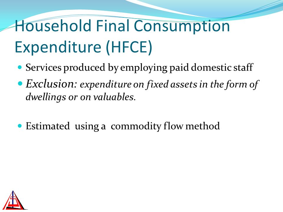 Household Final Consumption Expenditure (HFCE) Services produced by employing paid domestic staff Exclusion: expenditure on fixed assets in the form of dwellings or on valuables.