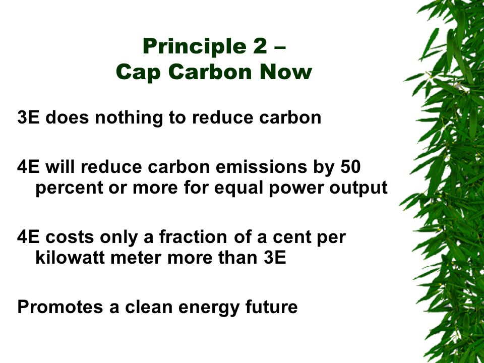 Principle 2 – Cap Carbon Now 3E does nothing to reduce carbon 4E will reduce carbon emissions by 50 percent or more for equal power output 4E costs only a fraction of a cent per kilowatt meter more than 3E Promotes a clean energy future