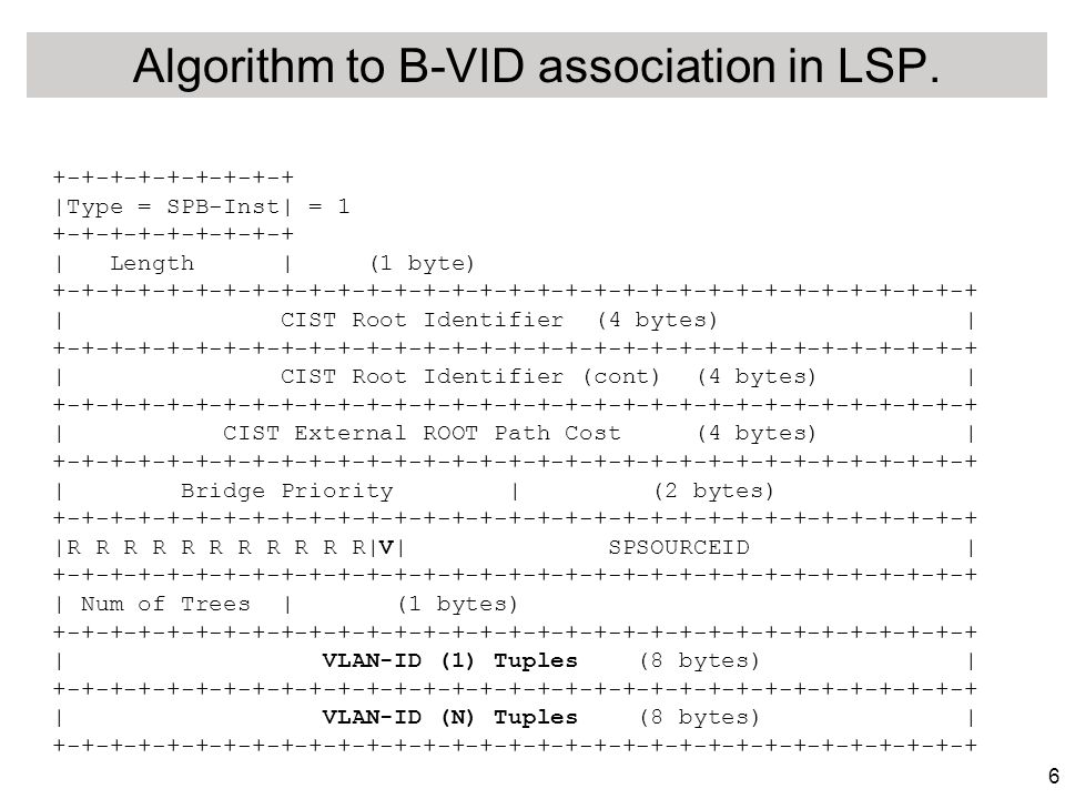 6 Algorithm to B-VID association in LSP.