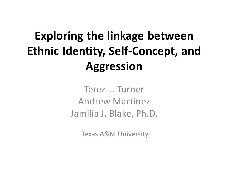 Exploring the linkage between Ethnic Identity, Self-Concept, and Aggression Terez L.
