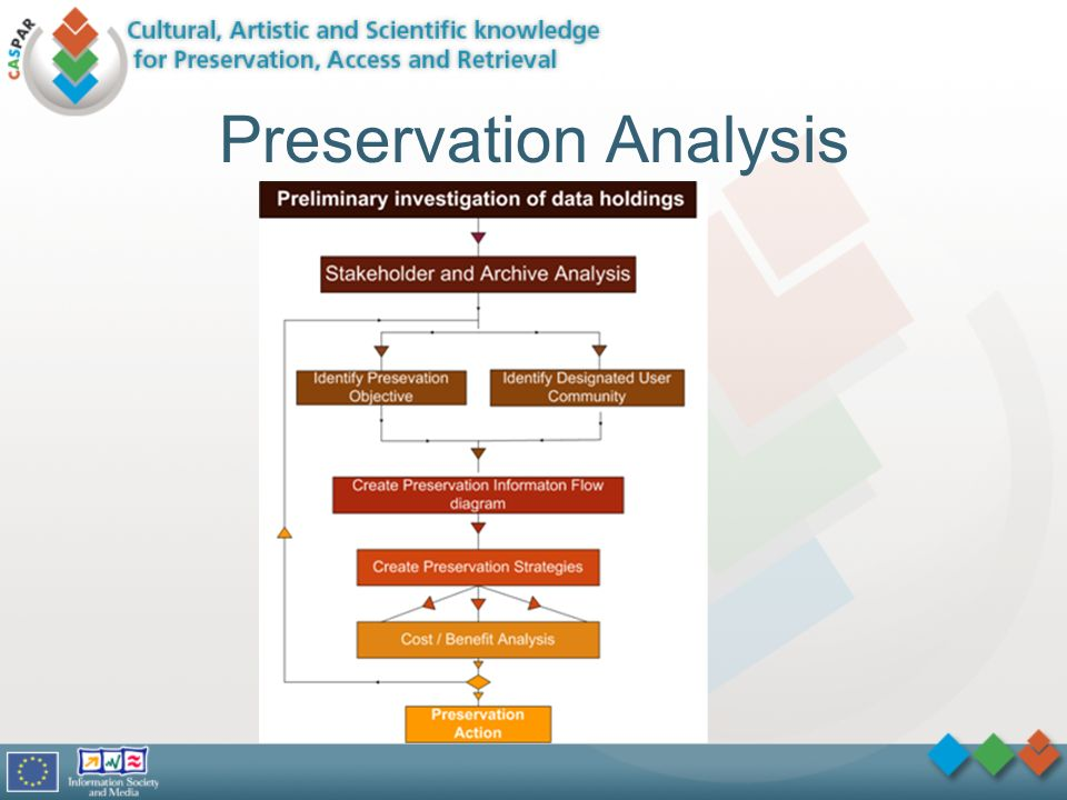 Preservation Analysis