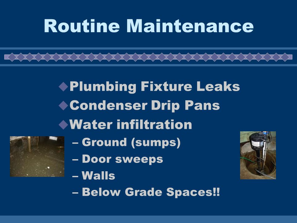 Routine Maintenance Plumbing Fixture Leaks Condenser Drip Pans Water infiltration –Ground (sumps) –Door sweeps –Walls –Below Grade Spaces!!