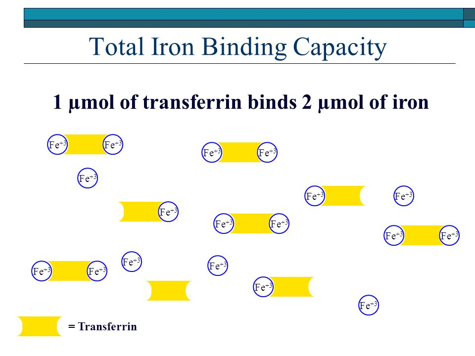 Total Iron Binding Capacity Fe +3 c c c c c c c c c 1 µmol of transferrin binds 2 µmol of iron c = Transferrin