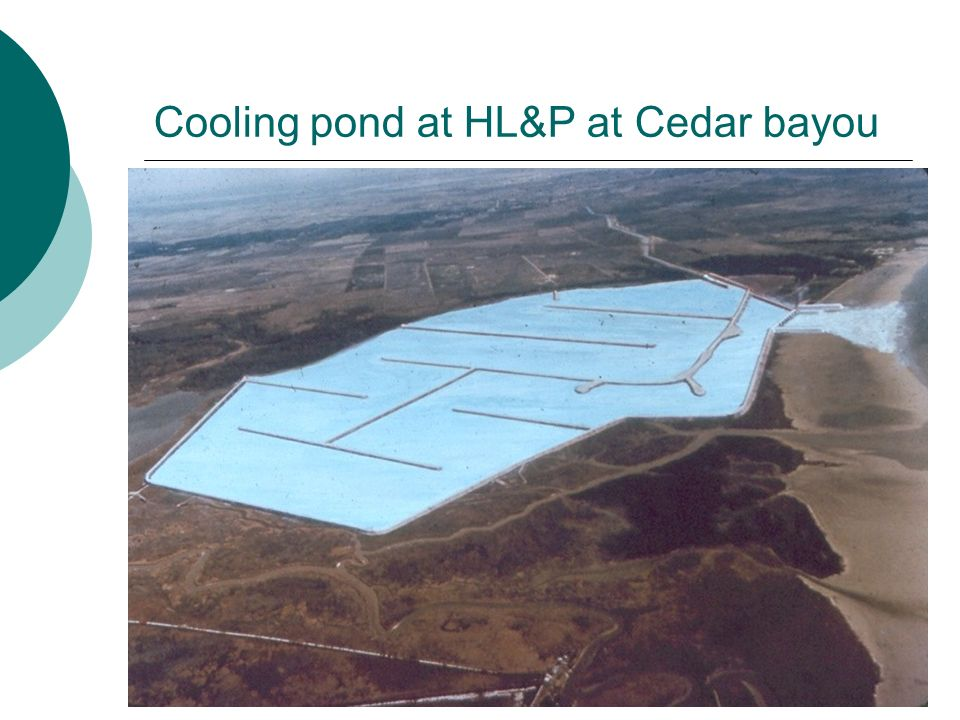 Cooling pond at HL&P at Cedar bayou