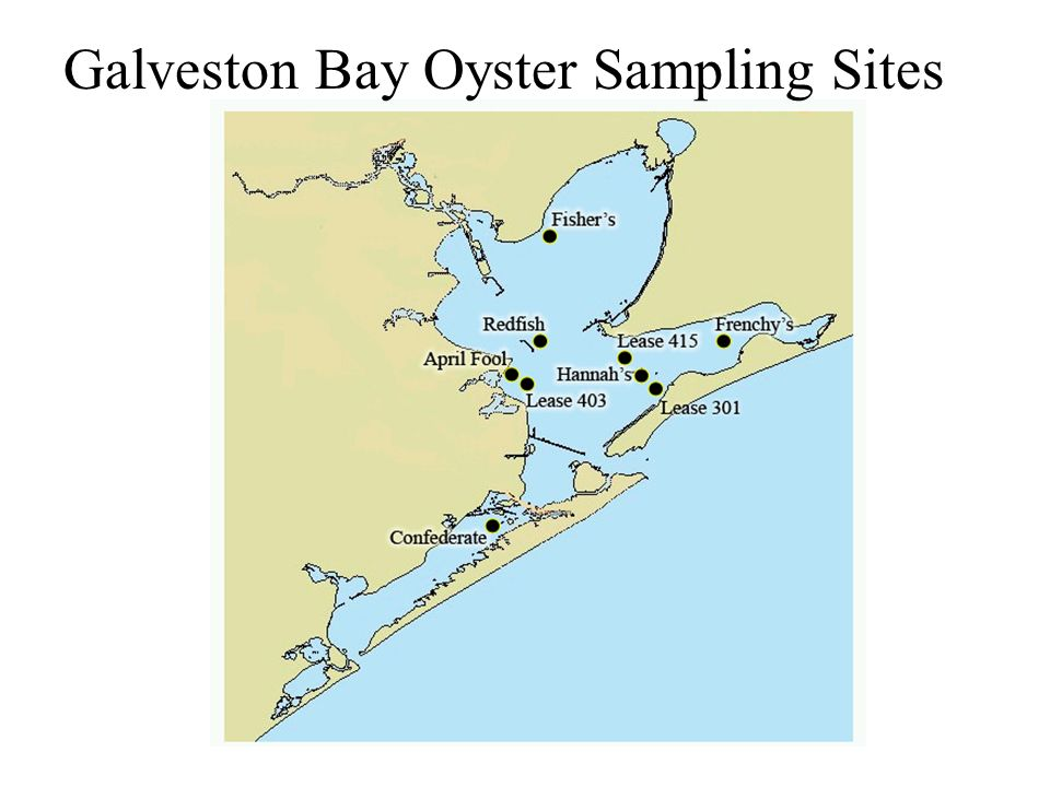 Galveston Bay Oyster Sampling Sites