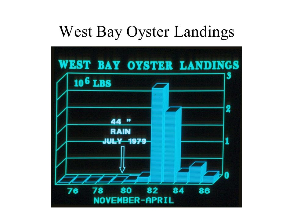 West Bay Oyster Landings