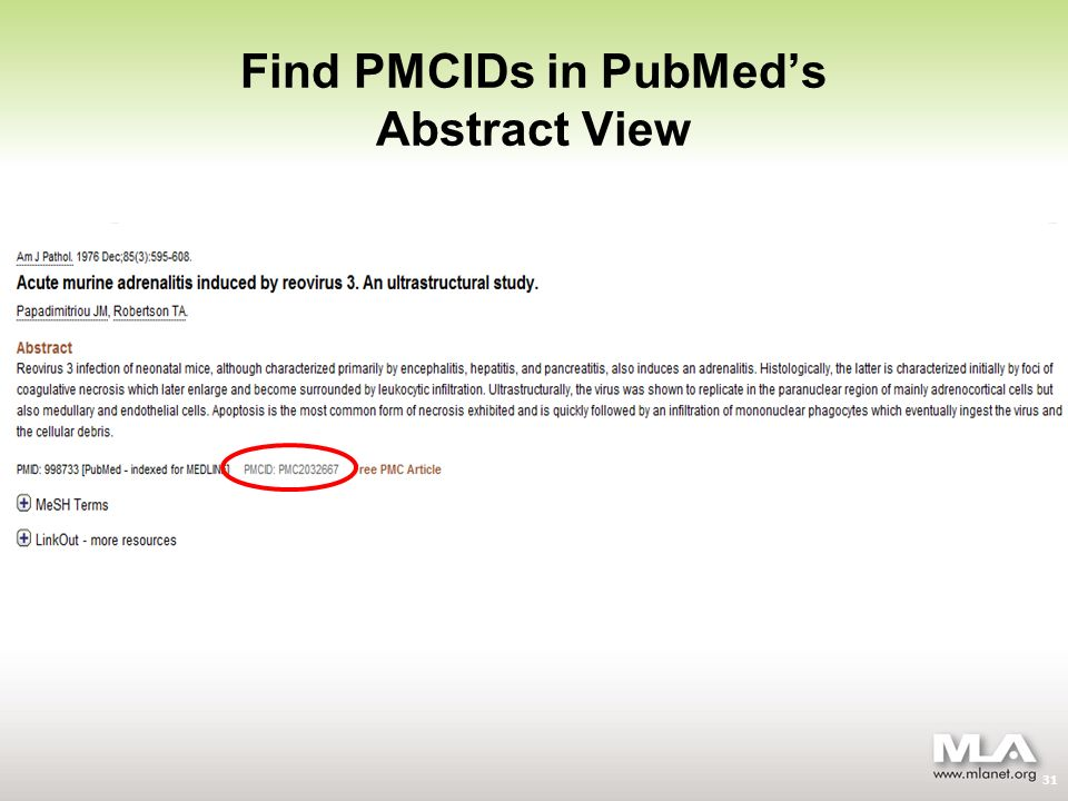 Find PMCIDs in PubMeds Abstract View 31