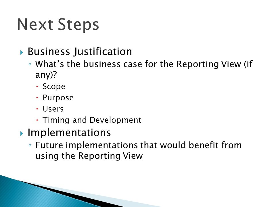 Business Justification Whats the business case for the Reporting View (if any).