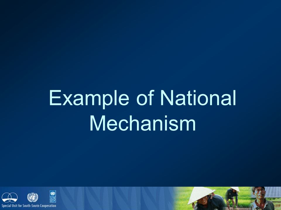 Example of National Mechanism
