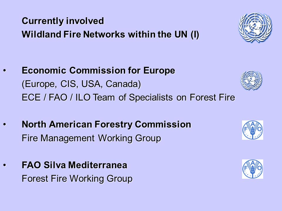 Currently involved Wildland Fire Networks within the UN (I) Economic Commission for EuropeEconomic Commission for Europe (Europe, CIS, USA, Canada) ECE / FAO / ILO Team of Specialists on Forest Fire North American Forestry CommissionNorth American Forestry Commission Fire Management Working Group FAO Silva MediterraneaFAO Silva Mediterranea Forest Fire Working Group