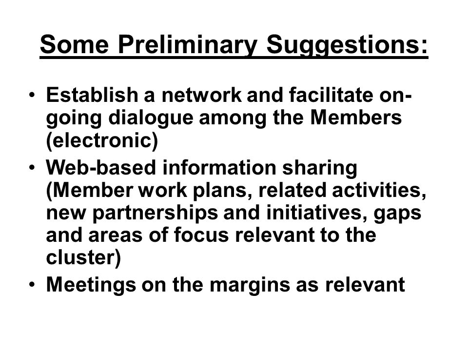 Some Preliminary Suggestions: Establish a network and facilitate on- going dialogue among the Members (electronic) Web-based information sharing (Member work plans, related activities, new partnerships and initiatives, gaps and areas of focus relevant to the cluster) Meetings on the margins as relevant