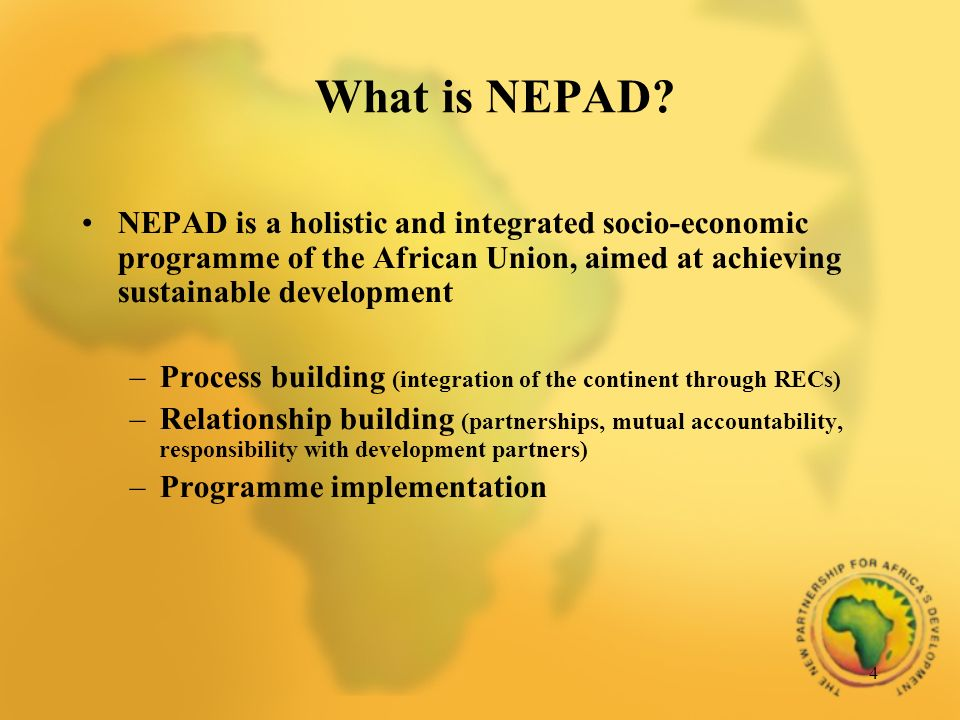 4 What is NEPAD.