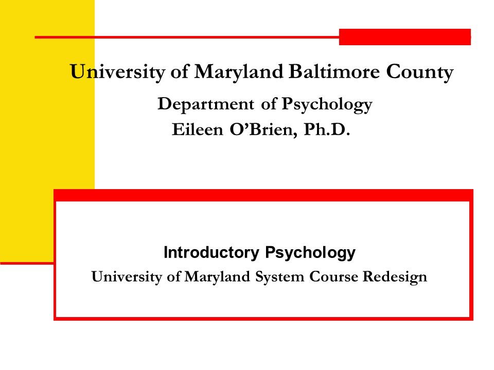 University of Maryland Baltimore County Department of Psychology Eileen OBrien, Ph.D.