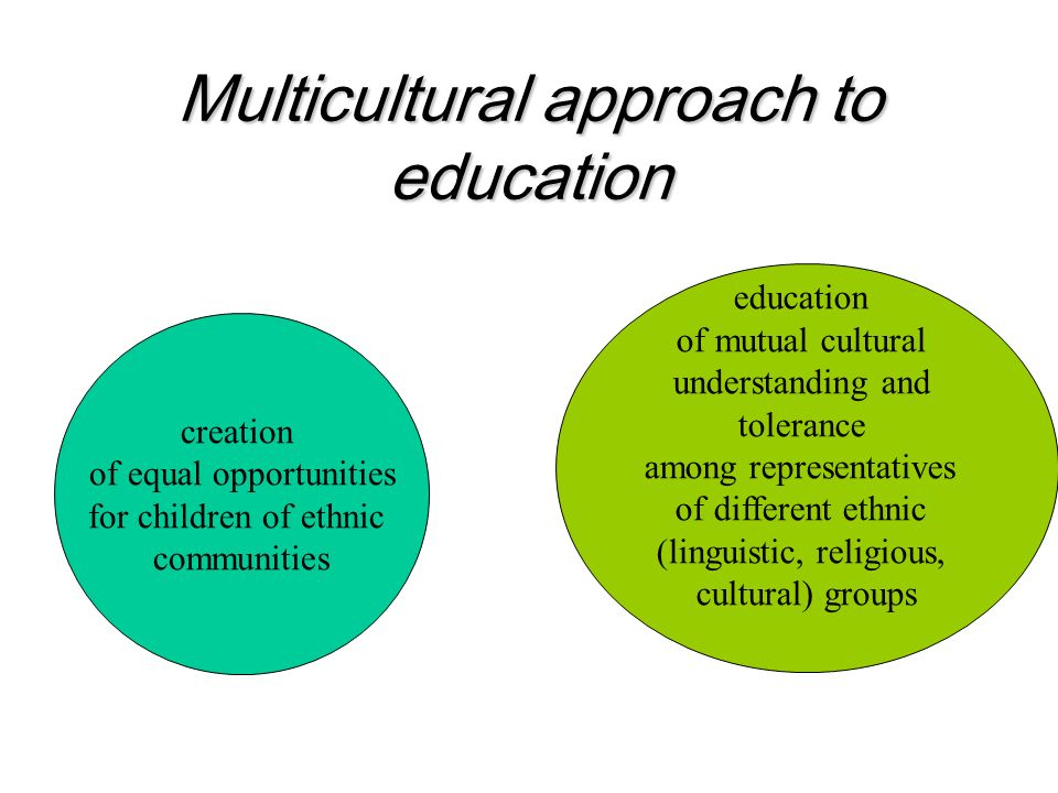 Multicultural approach to education creation of equal opportunities for children of ethnic communities education of mutual cultural understanding and tolerance among representatives of different ethnic (linguistic, religious, cultural) groups