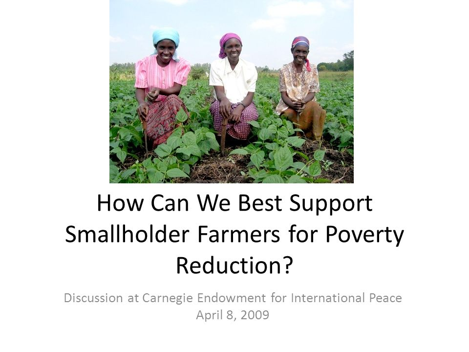 How Can We Best Support Smallholder Farmers for Poverty Reduction.