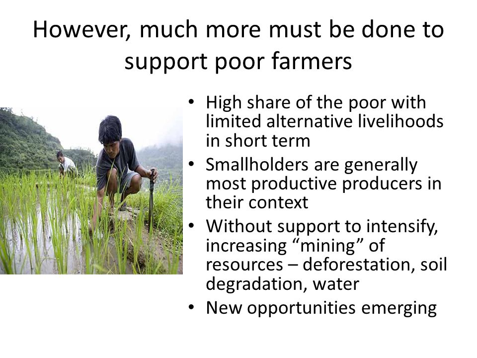 However, much more must be done to support poor farmers High share of the poor with limited alternative livelihoods in short term Smallholders are generally most productive producers in their context Without support to intensify, increasing mining of resources – deforestation, soil degradation, water New opportunities emerging