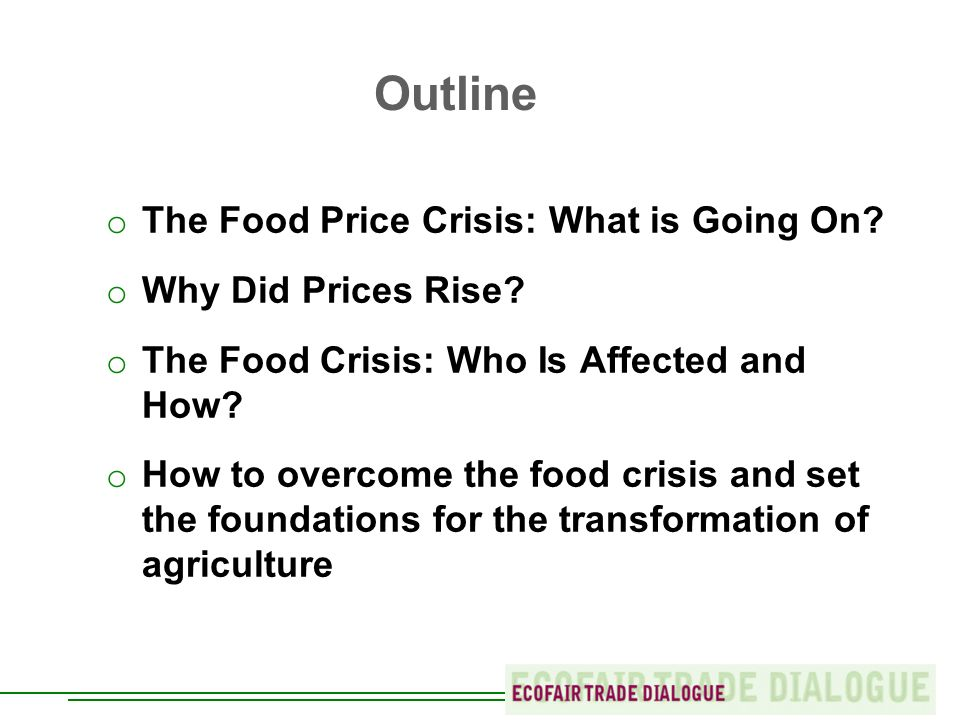 Outline o The Food Price Crisis: What is Going On.