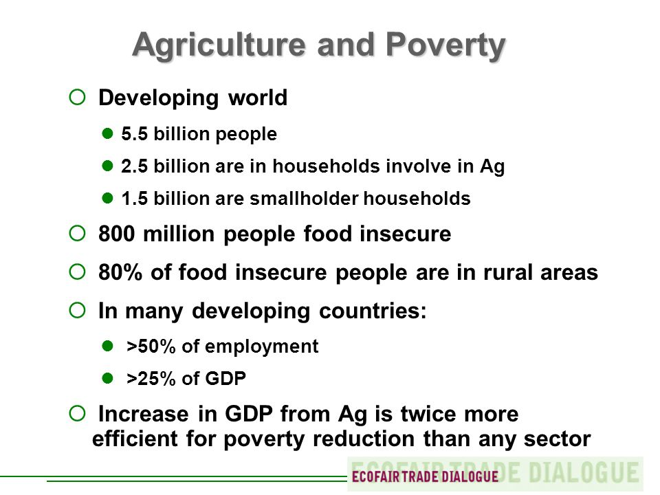 Agriculture and Poverty Developing world 5.5 billion people 2.5 billion are in households involve in Ag 1.5 billion are smallholder households 800 million people food insecure 80% of food insecure people are in rural areas In many developing countries: >50% of employment >25% of GDP Increase in GDP from Ag is twice more efficient for poverty reduction than any sector