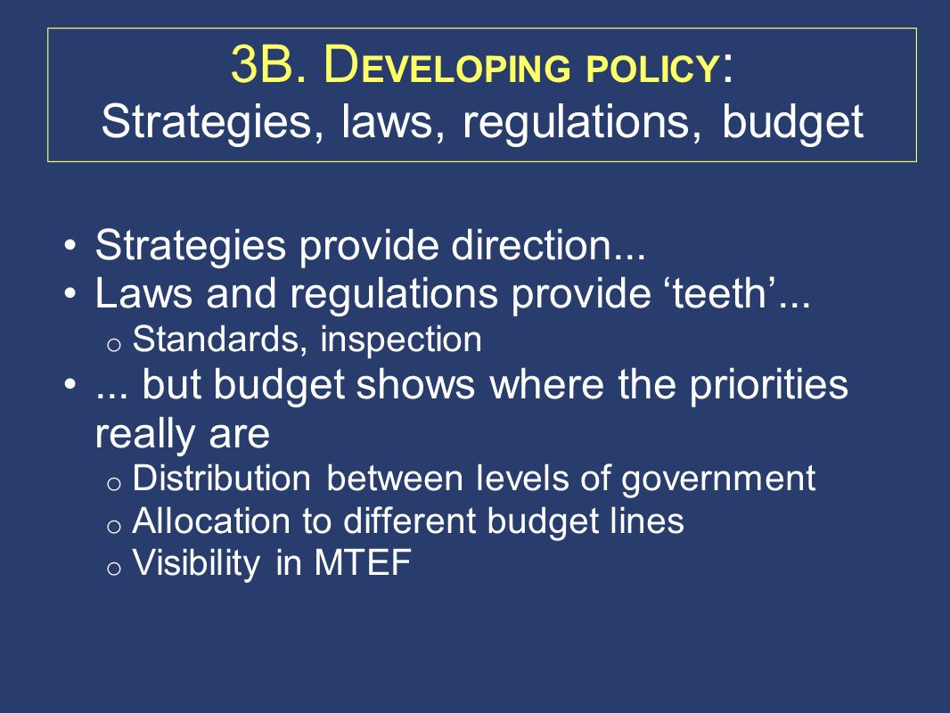 3B. D EVELOPING POLICY : Strategies, laws, regulations, budget Strategies provide direction...