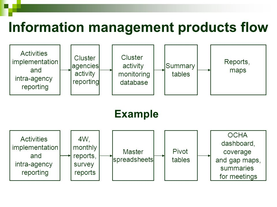 Information management products flow Activities implementation and intra-agency reporting Cluster agencies activity reporting Cluster activity monitoring database Summary tables Reports, maps Activities implementation and intra-agency reporting 4W, monthly reports, survey reports Master spreadsheets Pivot tables OCHA dashboard, coverage and gap maps, summaries for meetings Example