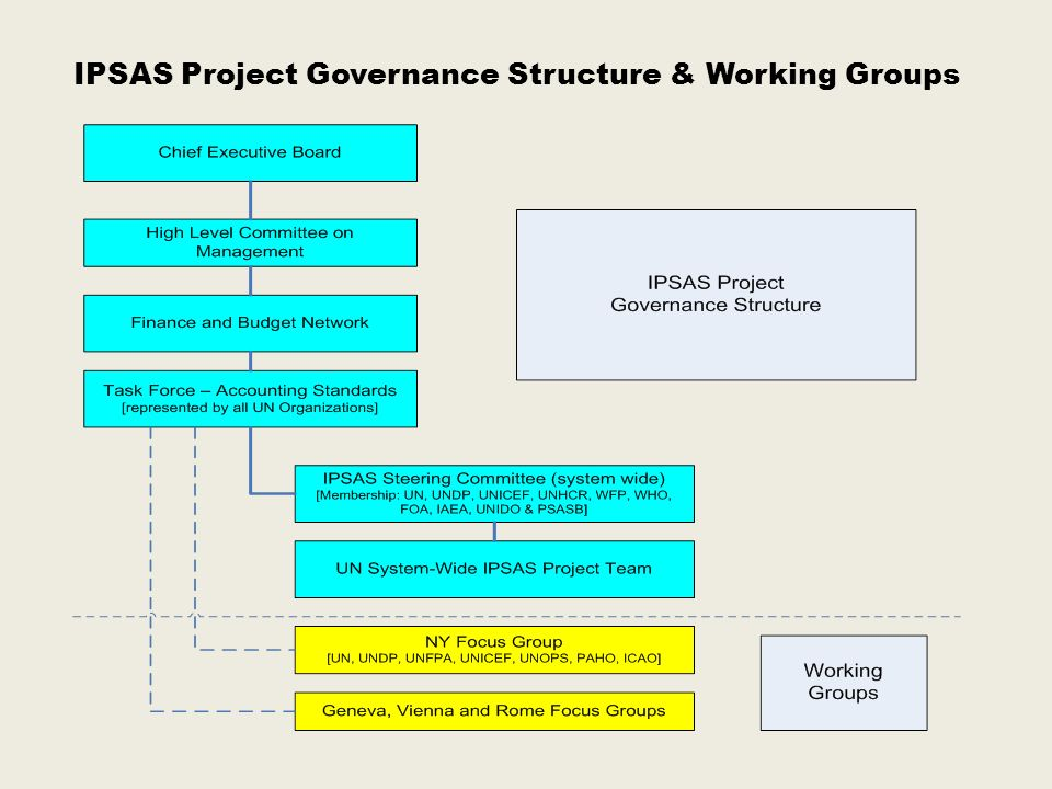 IPSAS Project Governance Structure & Working Groups