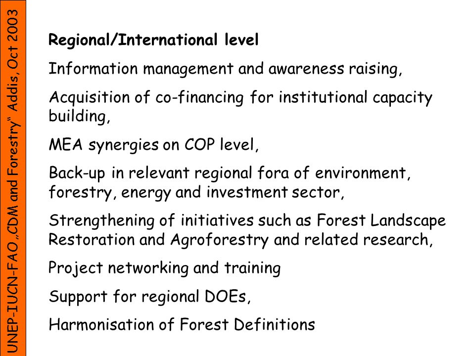 UNEP-IUCN-FAO CDM and Forestry Addis, Oct 2003 Regional/International level Information management and awareness raising, Acquisition of co-financing for institutional capacity building, MEA synergies on COP level, Back-up in relevant regional fora of environment, forestry, energy and investment sector, Strengthening of initiatives such as Forest Landscape Restoration and Agroforestry and related research, Project networking and training Support for regional DOEs, Harmonisation of Forest Definitions