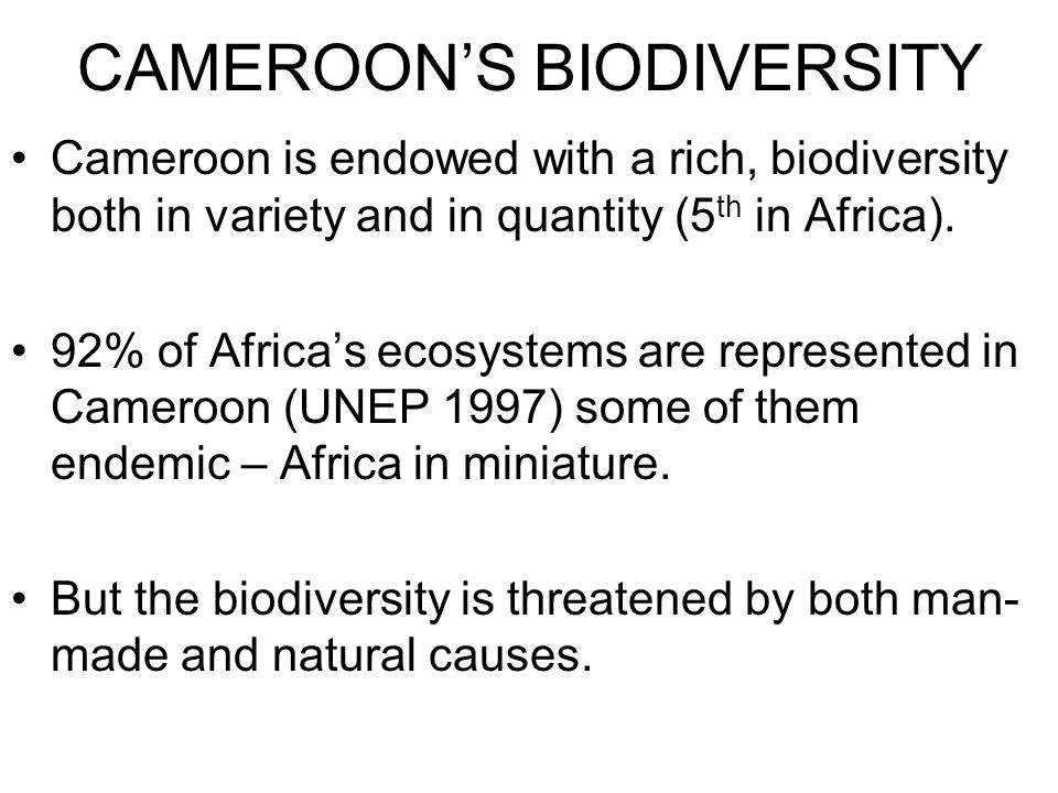 Cameroon is endowed with a rich, biodiversity both in variety and in quantity (5 th in Africa).