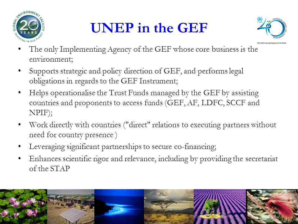 UNEP in the GEF The only Implementing Agency of the GEF whose core business is the environment; Supports strategic and policy direction of GEF, and performs legal obligations in regards to the GEF Instrument; Helps operationalise the Trust Funds managed by the GEF by assisting countries and proponents to access funds (GEF, AF, LDFC, SCCF and NPIF); Work directly with countries ( direct relations to executing partners without need for country presence ) Leveraging significant partnerships to secure co-financing; Enhances scientific rigor and relevance, including by providing the secretariat of the STAP