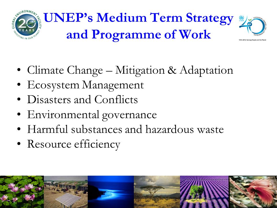 UNEPs Medium Term Strategy and Programme of Work Climate Change – Mitigation & Adaptation Ecosystem Management Disasters and Conflicts Environmental governance Harmful substances and hazardous waste Resource efficiency