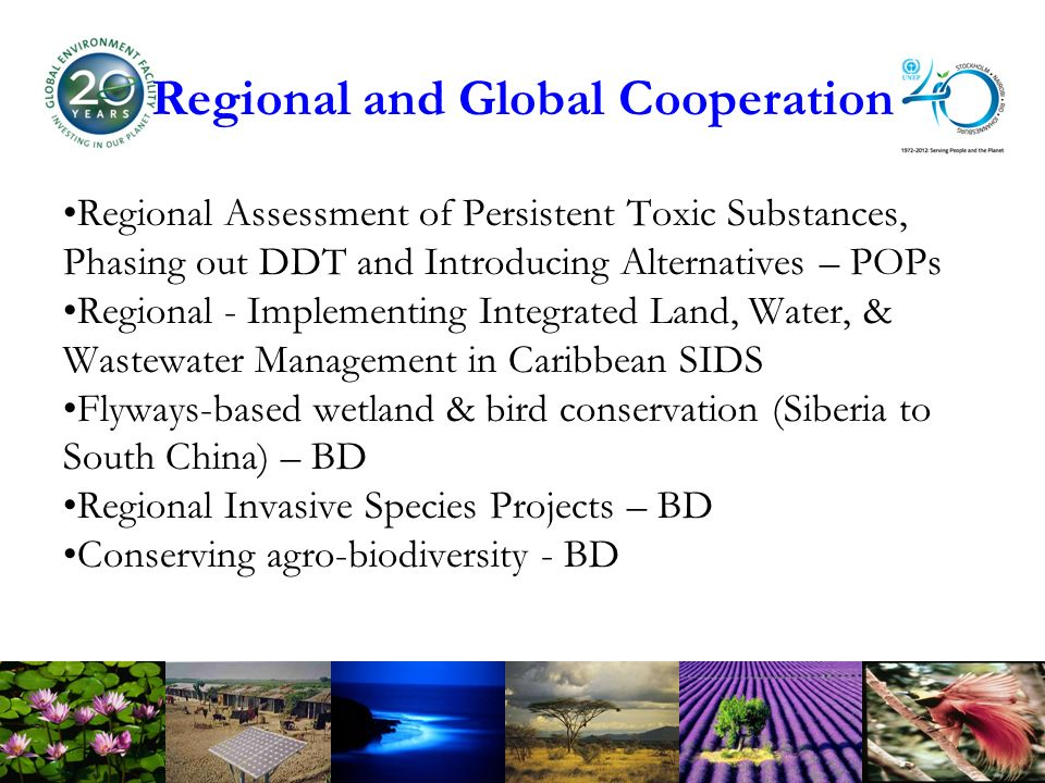 Regional and Global Cooperation Regional Assessment of Persistent Toxic Substances, Phasing out DDT and Introducing Alternatives – POPs Regional - Implementing Integrated Land, Water, & Wastewater Management in Caribbean SIDS Flyways-based wetland & bird conservation (Siberia to South China) – BD Regional Invasive Species Projects – BD Conserving agro-biodiversity - BD