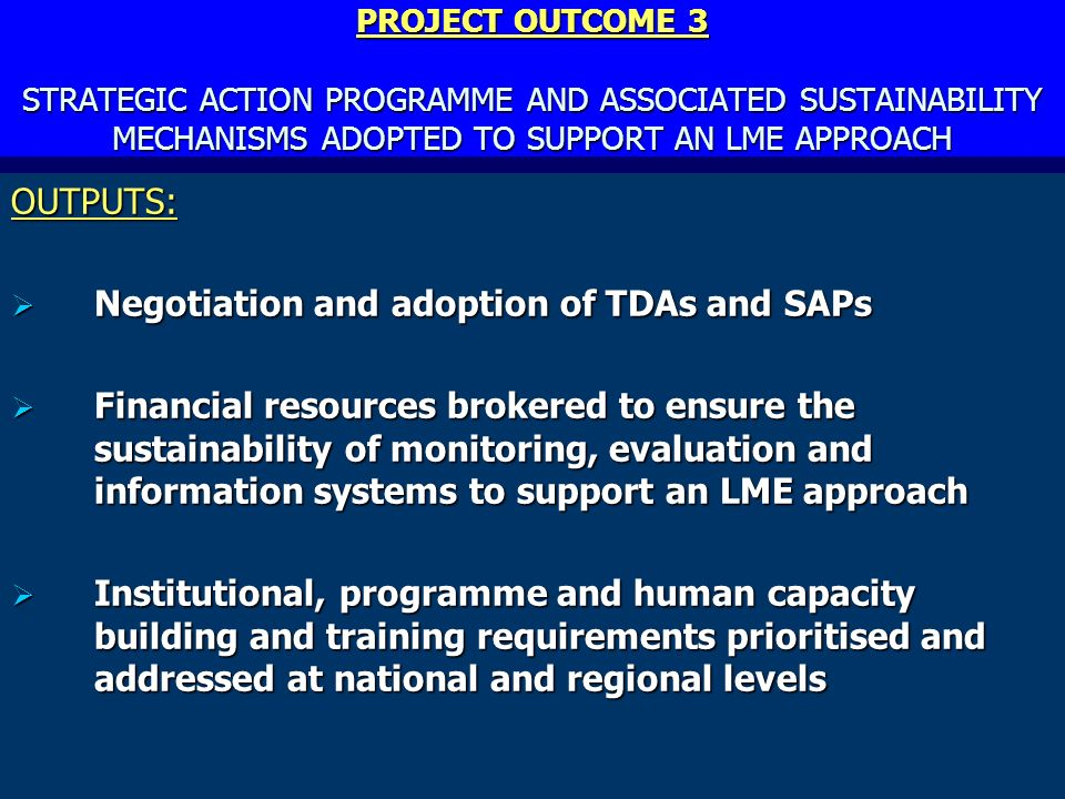 PROJECT OUTCOME 3 STRATEGIC ACTION PROGRAMME AND ASSOCIATED SUSTAINABILITY MECHANISMS ADOPTED TO SUPPORT AN LME APPROACH OUTPUTS: Negotiation and adoption of TDAs and SAPs Negotiation and adoption of TDAs and SAPs Financial resources brokered to ensure the sustainability of monitoring, evaluation and information systems to support an LME approach Financial resources brokered to ensure the sustainability of monitoring, evaluation and information systems to support an LME approach Institutional, programme and human capacity building and training requirements prioritised and addressed at national and regional levels Institutional, programme and human capacity building and training requirements prioritised and addressed at national and regional levels